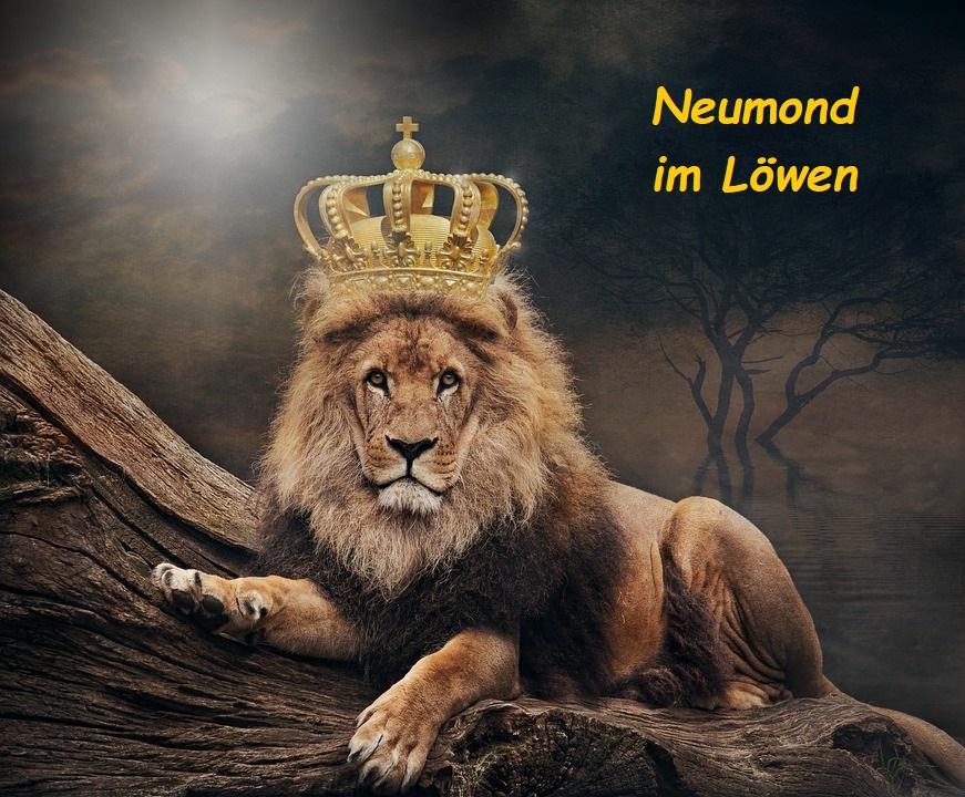Neumond im Löwen