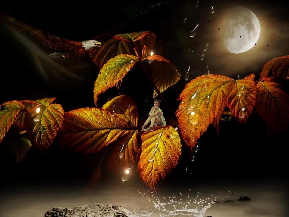 Astronomischer Herbstbeginn – Tagesundnachtgleiche – Äquinoktium