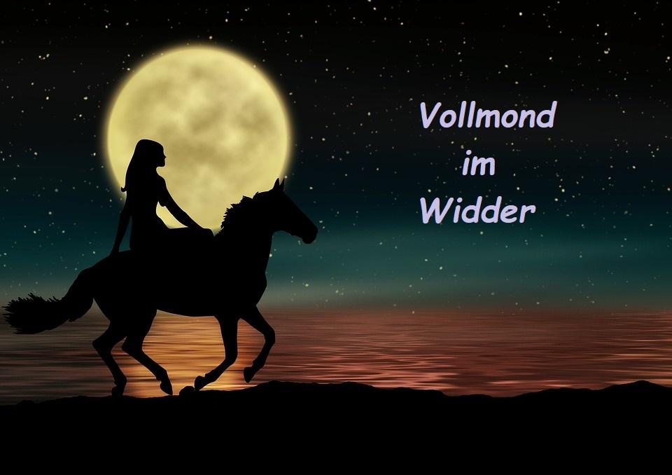 VOLLMOND IM WIDDER